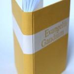 2013-12-evangelii-gaudium-3